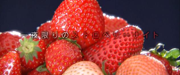 桃の味がするイチゴがマツコの知らない世界に登場!一粒1300円!?